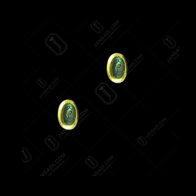 GOLD PLATED ABALONE STONE EARRINGS